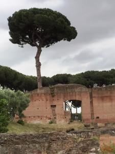 A quiet corner of the Forum